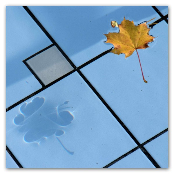 Klappkarte Herbstanfang