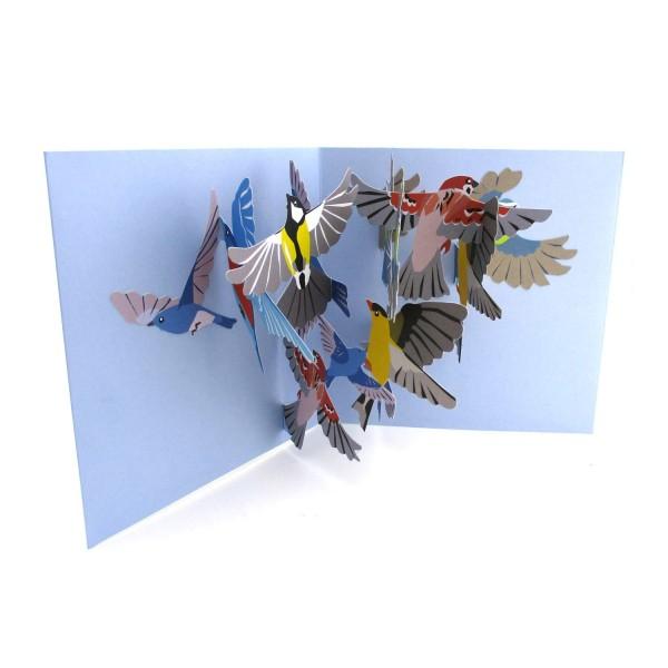 Pop-up-Karte mit einer bunten Schar Vögel