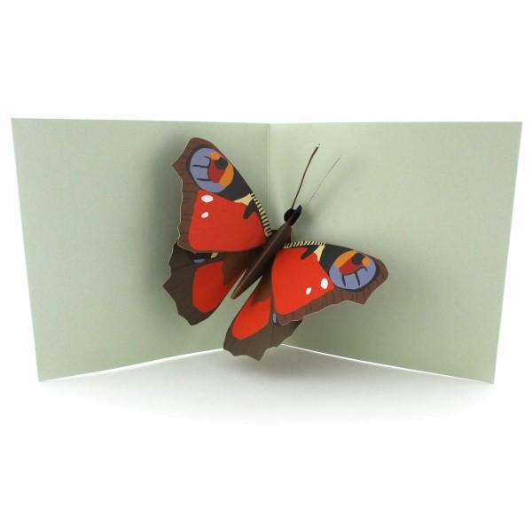 Pop-up-Karte mit einem Schmetterling