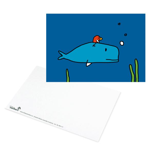 Postkarte Pottwal - Grusskarte Ansicht Vorderseite und Rückseite