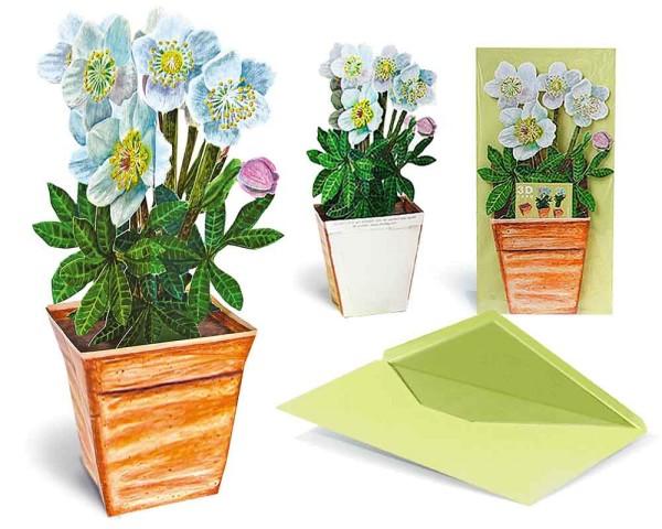 Grußkarte 3D Christrose im Topf - Blumenmotiv
