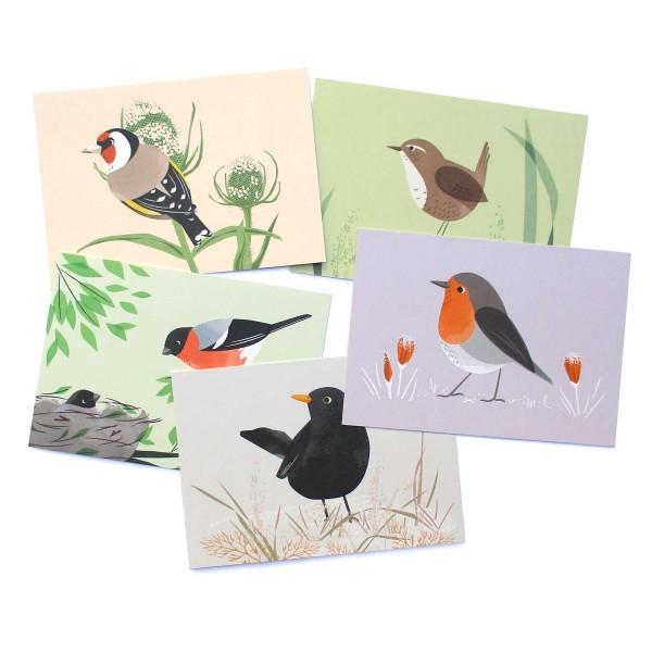 Postkartenset Heimische Vögel