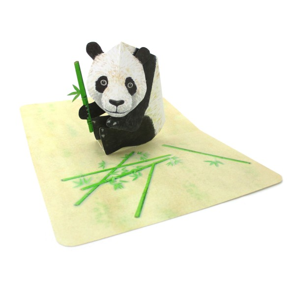 Pop-up-Karte mit einem Panda