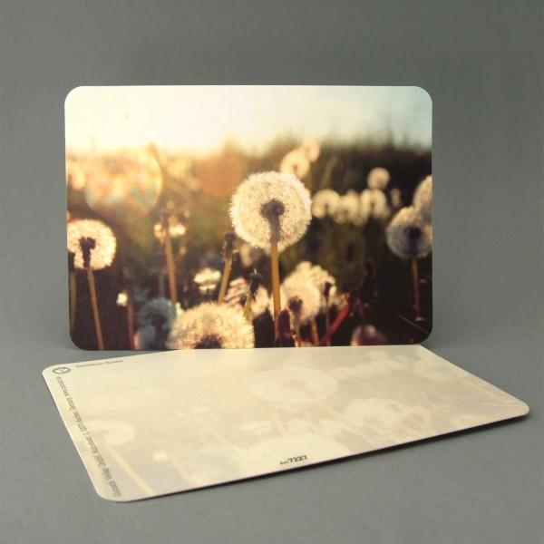 Postkarte Pusteblumen