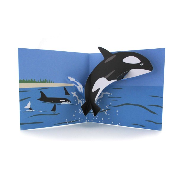 Pop-up-Karte mit einem Schwertwal