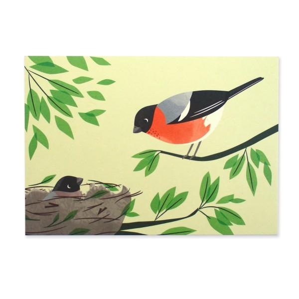 Postkarte Buchfink
