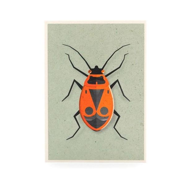Postkarte Feuerwanze